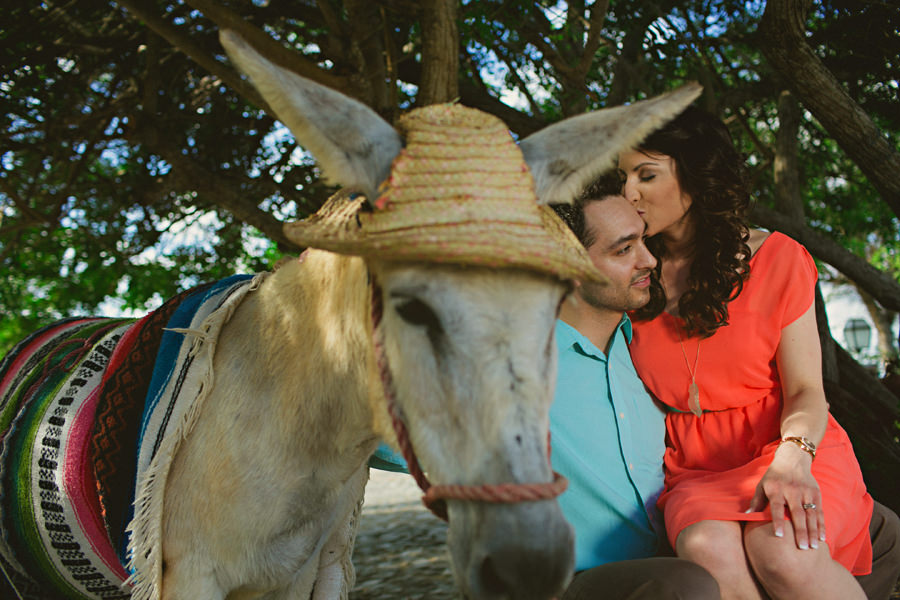 altos de chavon donkey